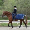 bucas Riding Rug (Nieren-Ausreitdecke)