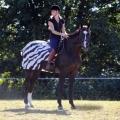 bucas Riding Rug Nieren-Ausreitdecke Zebra